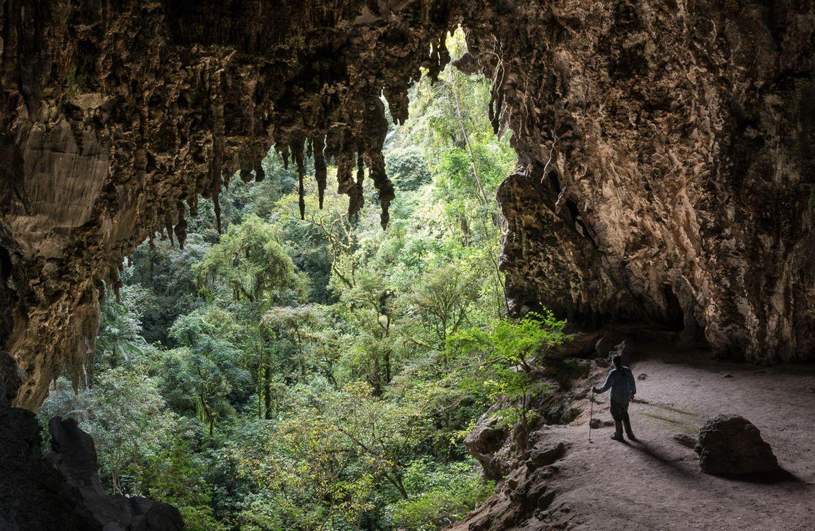 Caverna Temimina no Parque Estadual Turístico do Alto Ribeira