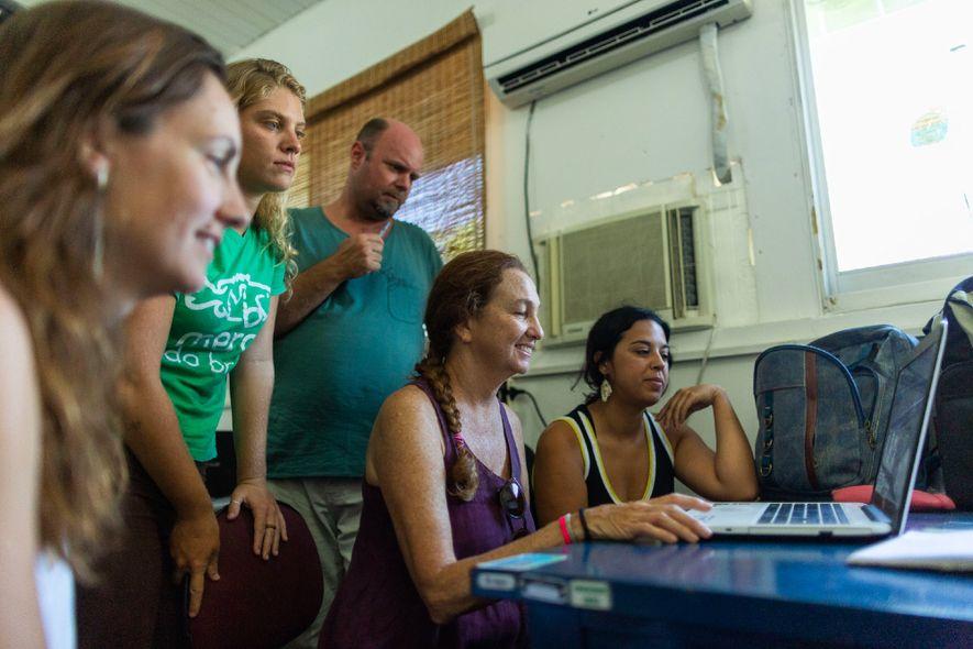 Beatrice analisa dados coletados por sua equipe de pesquisadores e alunos no Centro Nacional de Pesquisa ...