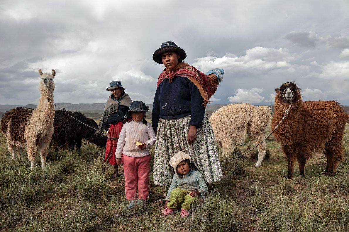 Foto de família de pastores com suas lhamas