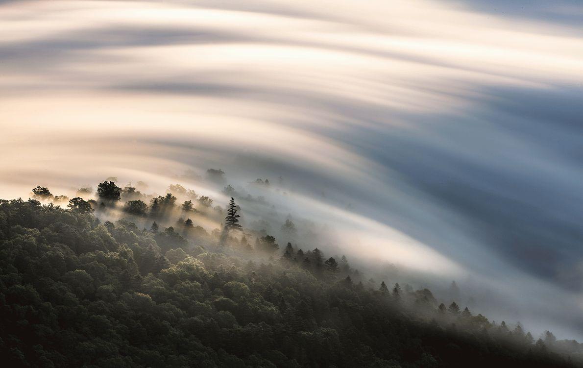 Imagem de nuvens sobre uma floresta no Japão