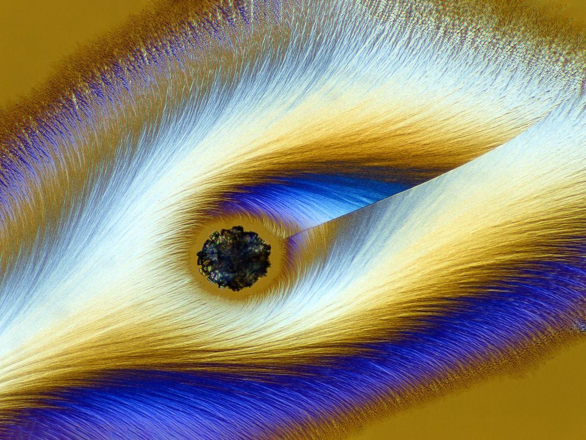 O fotógrafo alemão Karl Deckart transforma a vitamina C em algo totalmente fantasmagórico sob um microscópio ...