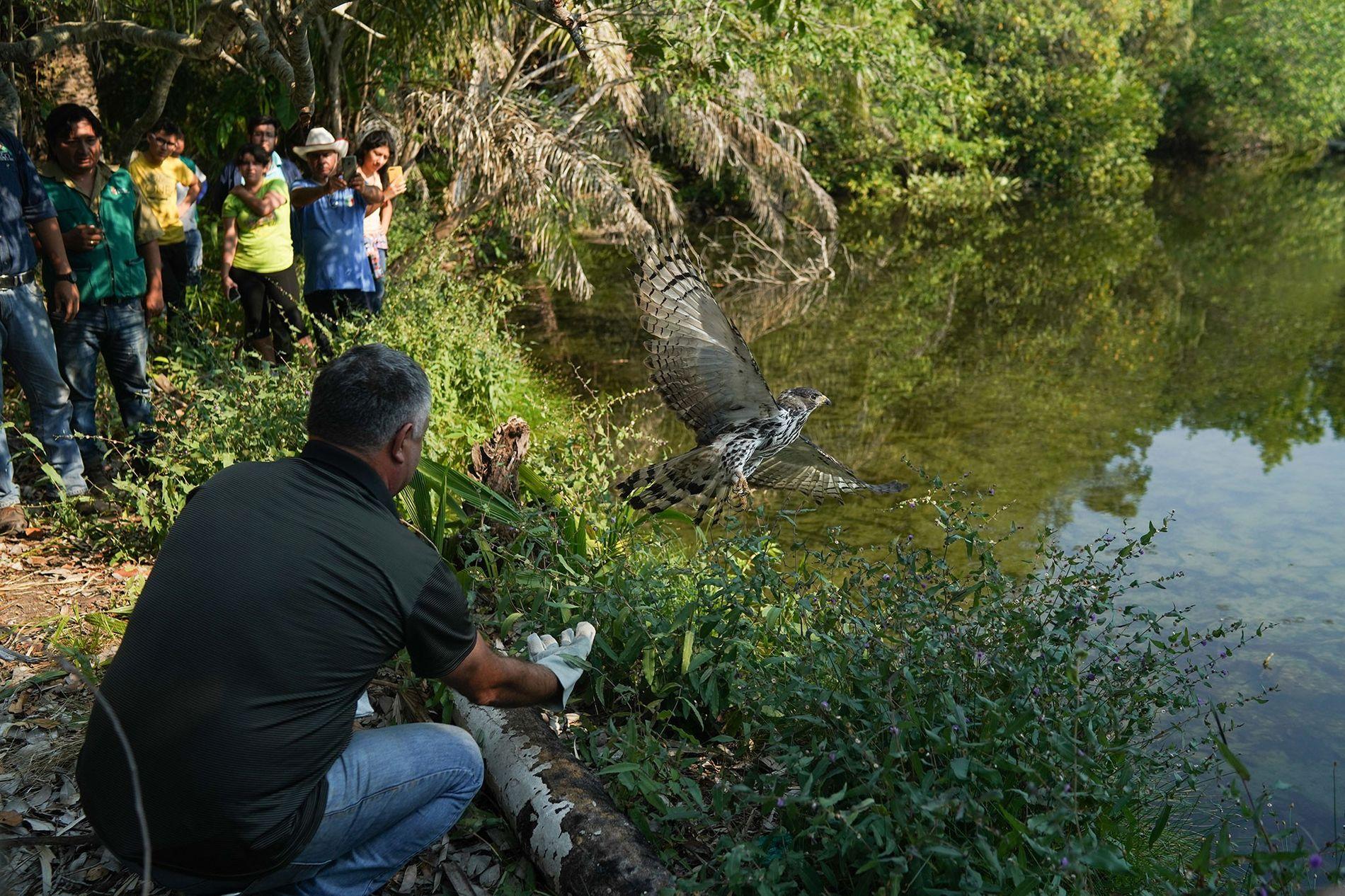 A equipe do centro de resgate de Aguas Calientes, juntamente com oficiais do governo, liberta um ...