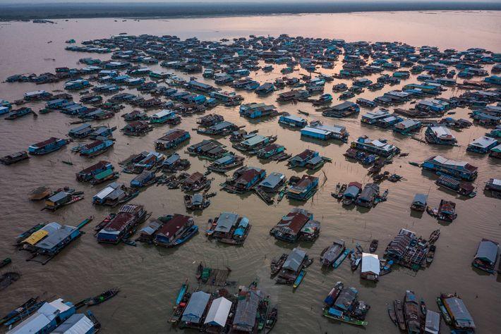 No passado, muitos pescadores em Kompong Luong, sem querer, apanhavam peixes gigantes do Mekong. Hoje em ...