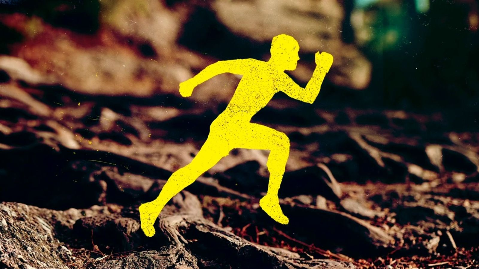 Nat Geo Run 2018! Corra por uma causa