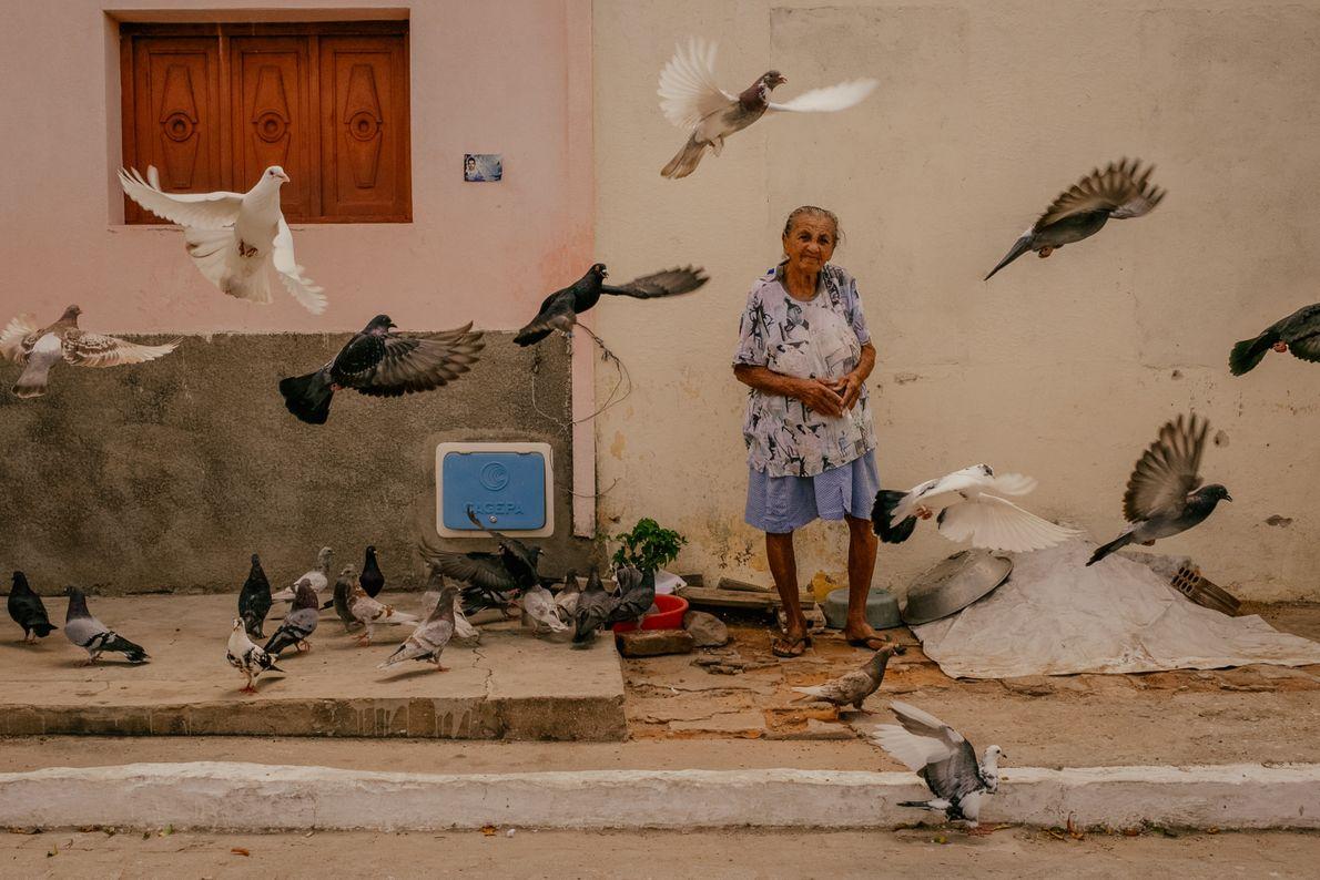 senhora-alimenta-pombos