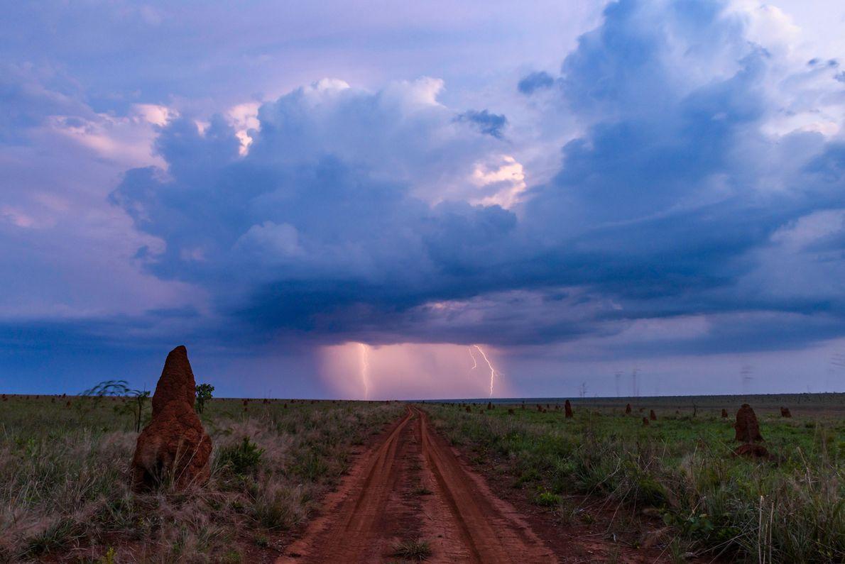 GOIÁS, BRASIL Os campos abertos do Parque Nacional das Emas, no sul do estado de Goiás, permitem ...