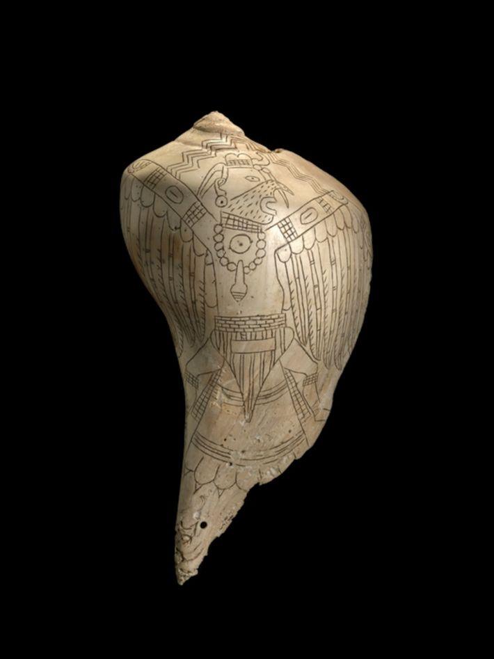 Entre os tesouros de Spiro: conchas da Costa do Golfo foram transformadas em xícaras e gravadas ...