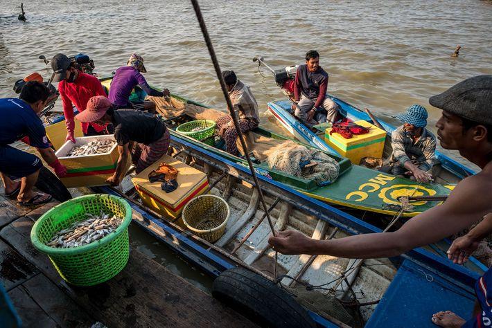 Pescadores cambojanos instalam-se na casa de barcos de um negociante em Kompong Luong. Os atravessadores vietnamitas ...