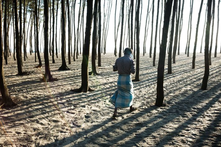 crise refugiados rohingyas