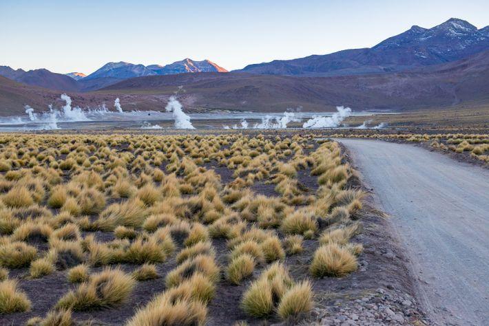 As manhãs proporcionam uma vista ideal nos gêiseres El Tatio no Atacama. A mais de 4267 ...