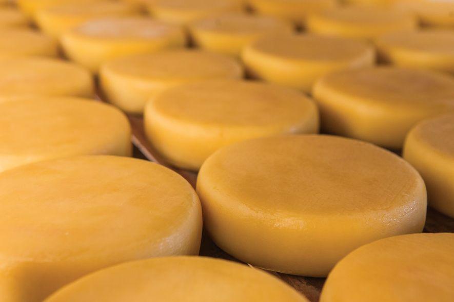 Como produtores do queijo da Canastra preservam um conhecimento ancestral