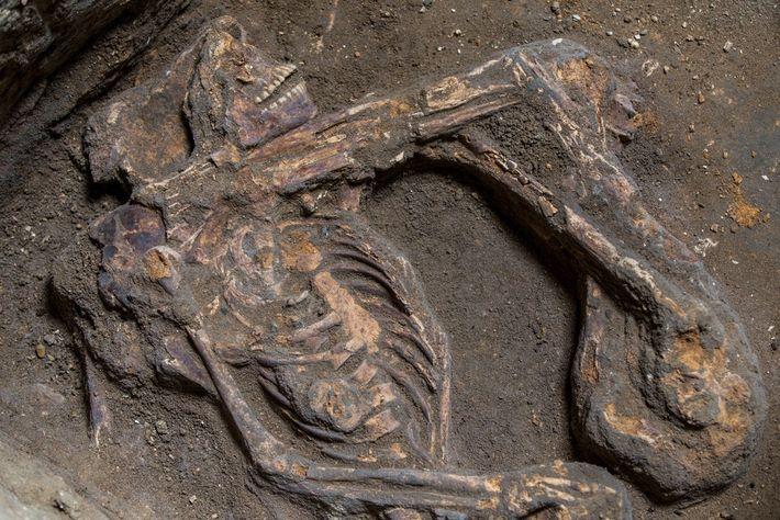 esqueleto Bakhita
