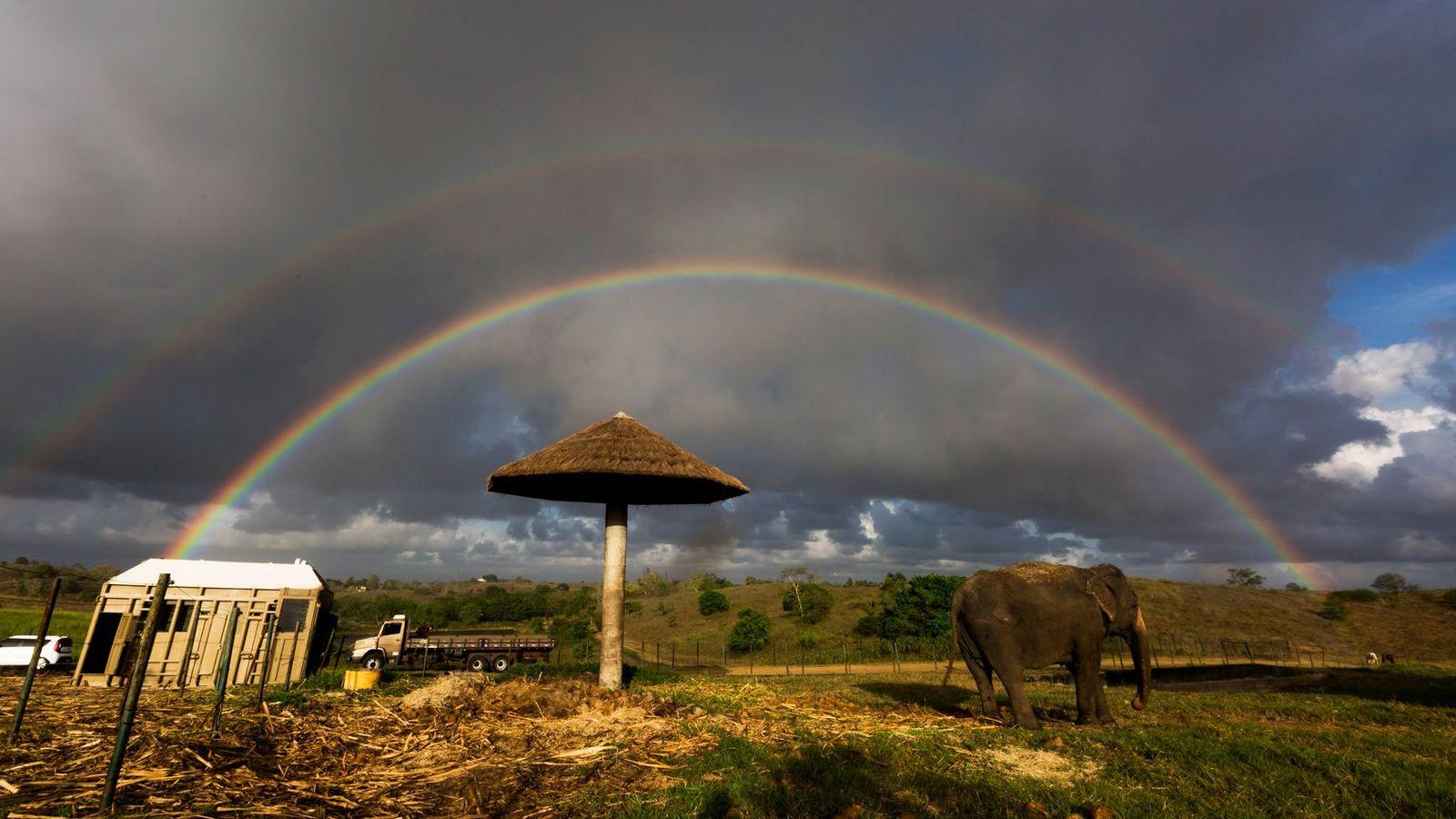 Um arco-íris se forma na fazenda Boa Luz, onde Rana viveu mais de 10 anos e ...