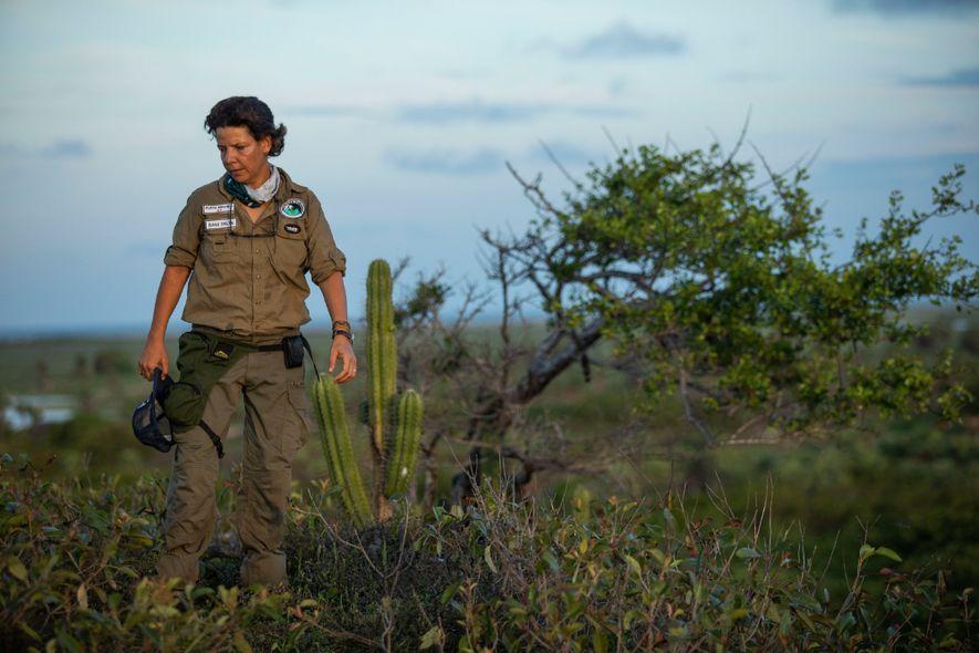 Exploradora clássica, com mais de 20 expedições pelos rincões da Amazônia, Flávia Miranda também se sente ...