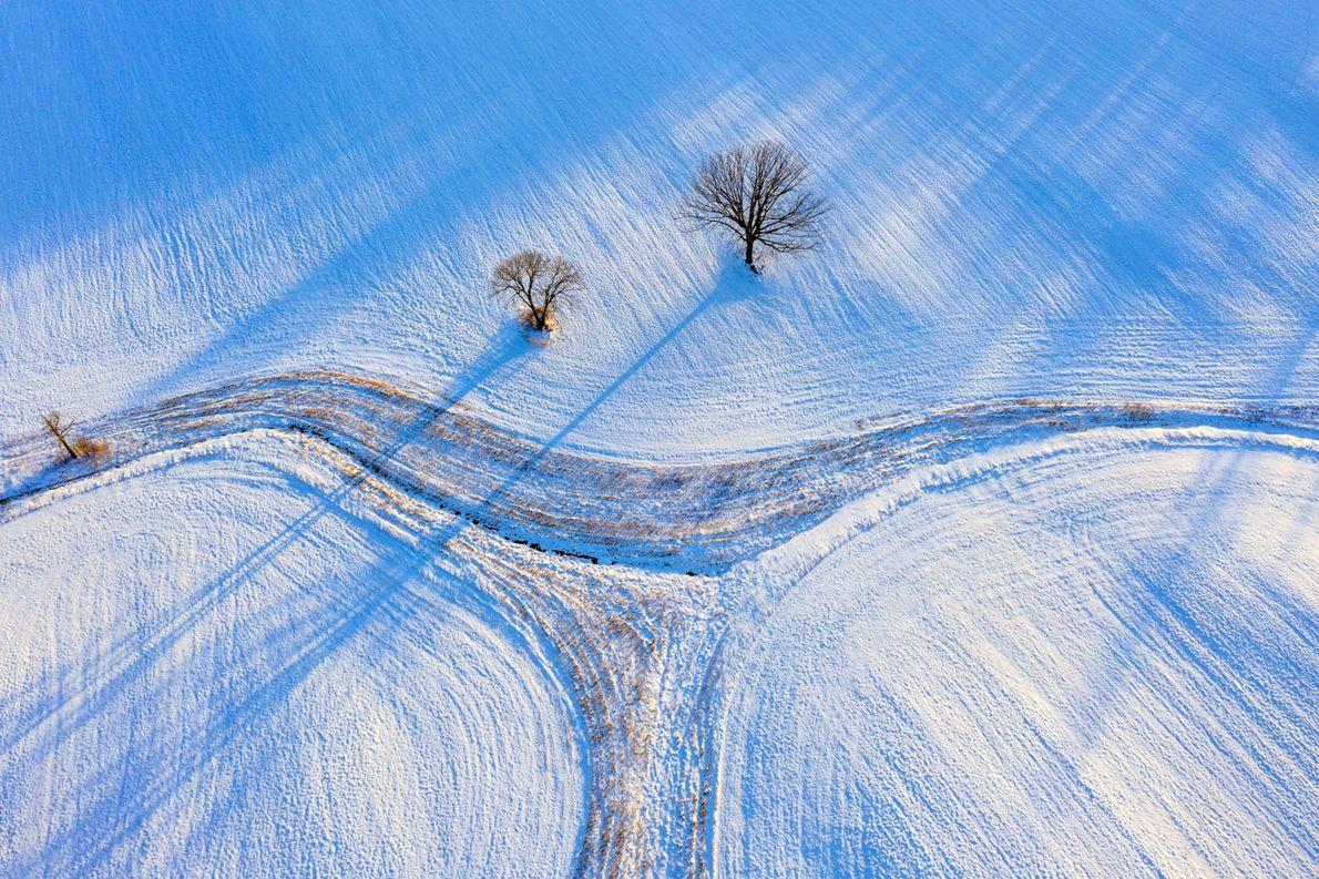 A combinação de campos cobertos de neve e da luz do entardecer dão um tom de ...