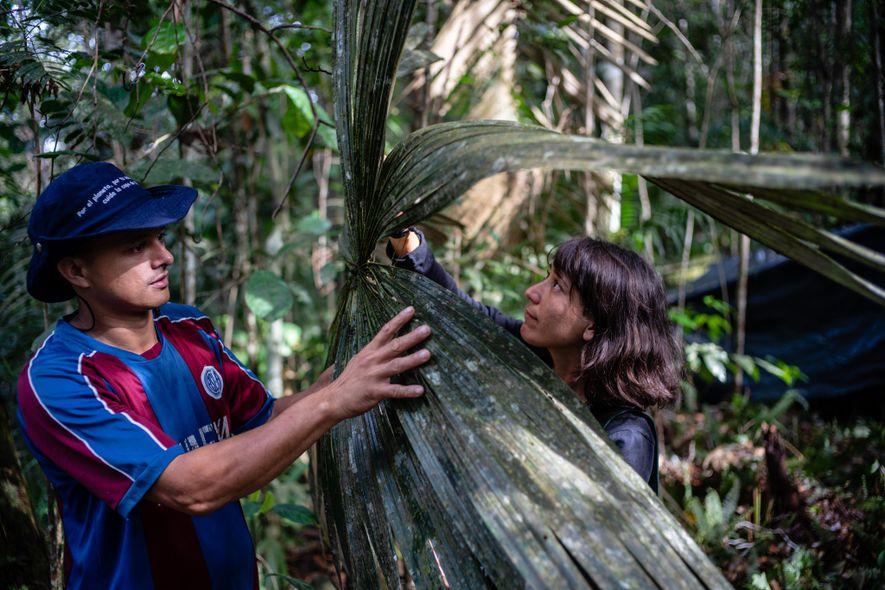 Obed Quiroz (esquerda) e Lina Bolivar (direita), que fazem parte da equipe de botânicos, dizem que ...