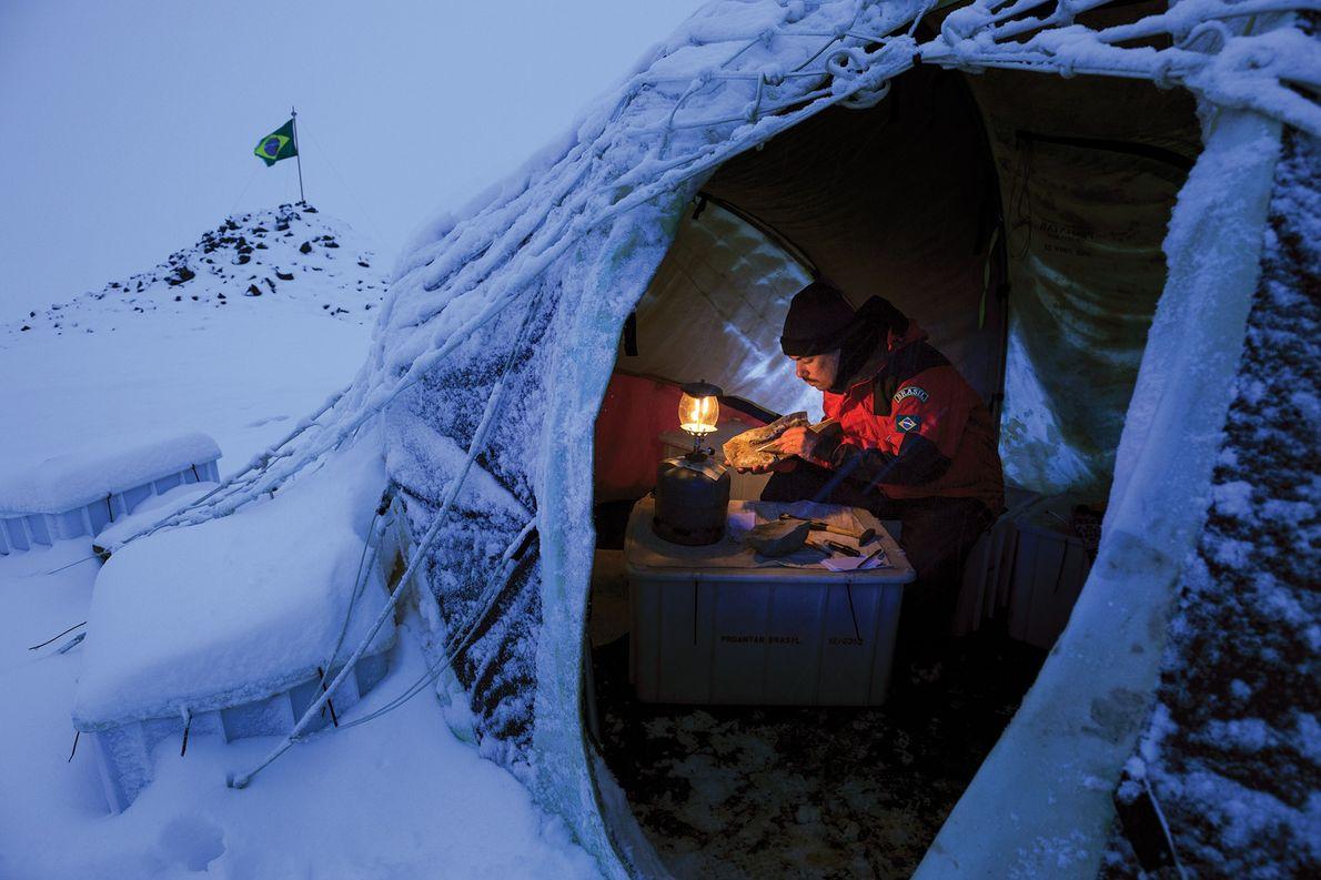 O paleontólogo Douglas Santos Riff, da Universidade Federal de Uberlândia, examina um fóssil de madeira, datado …