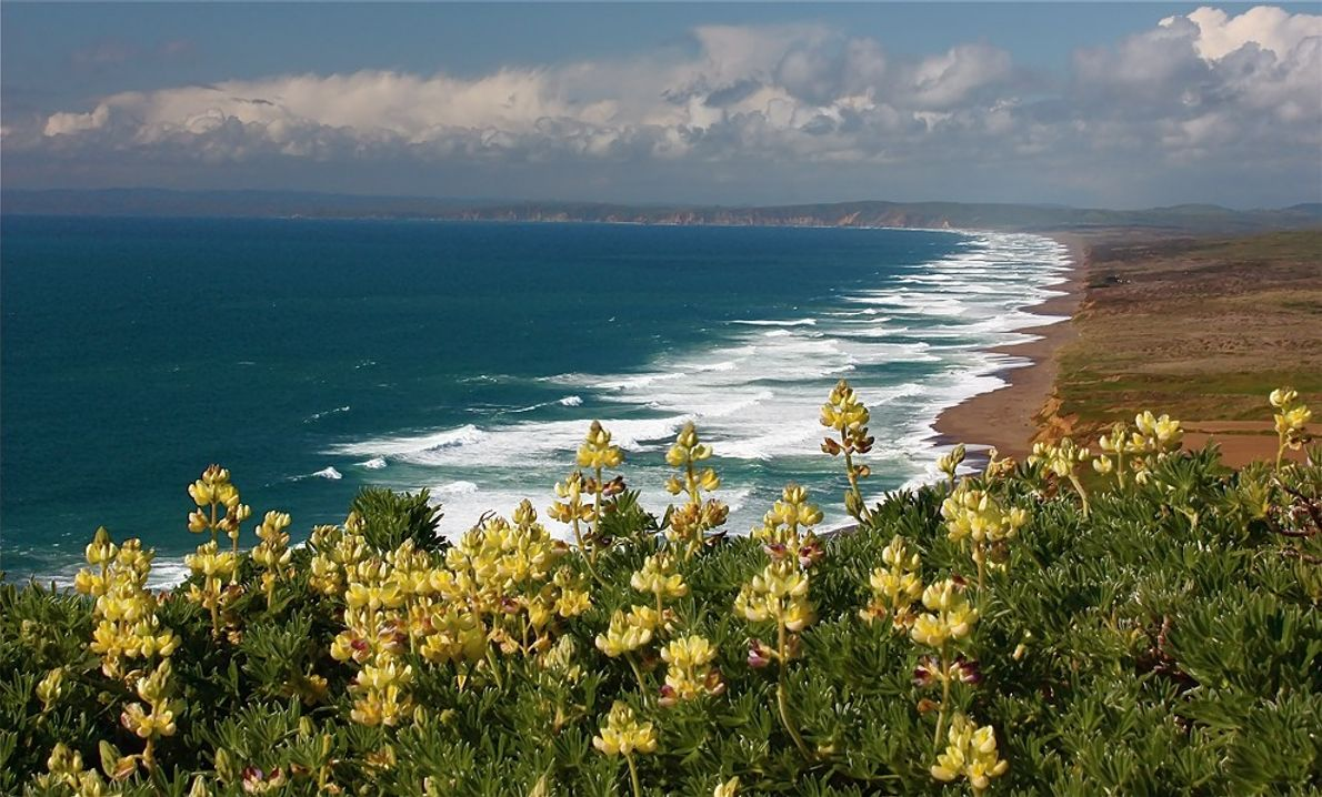 foto de costa californiana