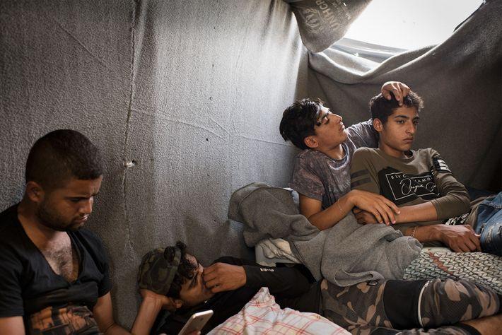 Homens jovens da Síria que vivem no Olival há dois anos buscam há seis meses uma ...