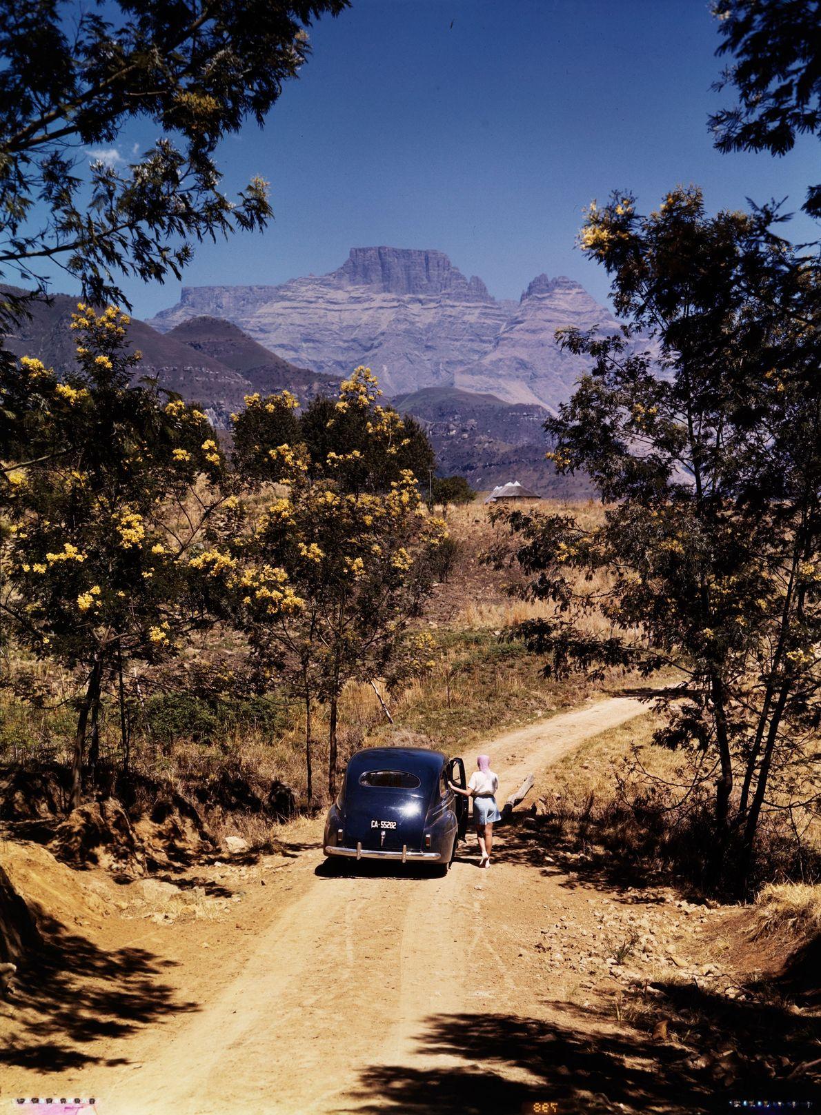 África do Sul: 1941