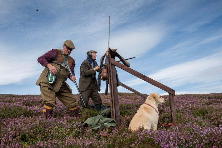 paisagem-escocesa-caça-a-perdiz-esporte-aberfeldy