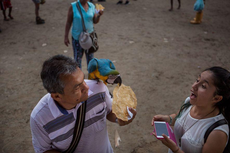 Um casal alimenta uma arara com um doce. Puerto Alegría vende comida para turistas, mas ela ...
