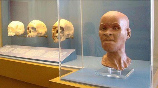 cranio e rosto reconstituido de Luzia