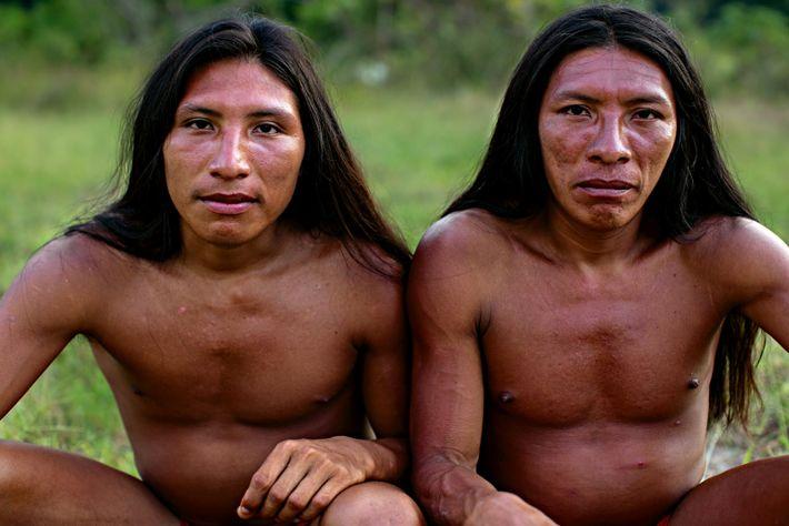 índios wajapi