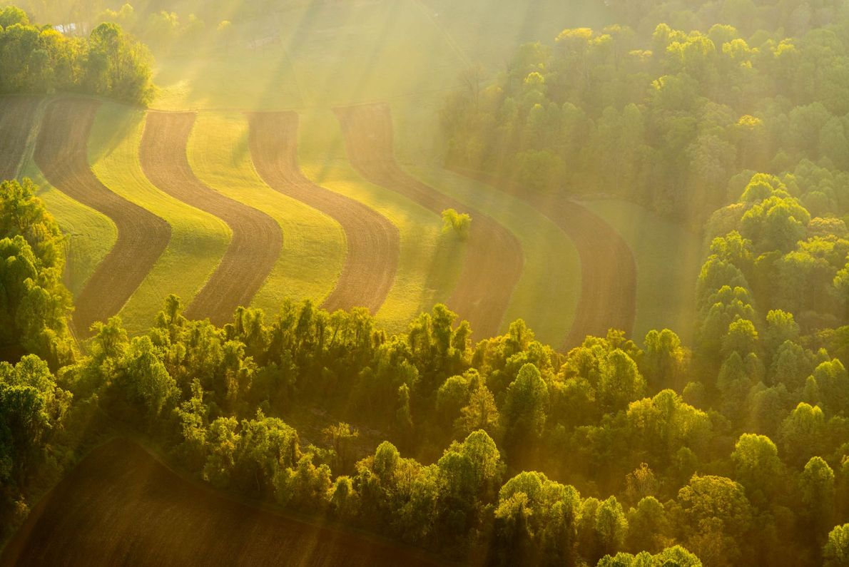 The sun rises over Woodlawn, 1,100 acres of meadows and woods in Delaware's Brandywine Valley.