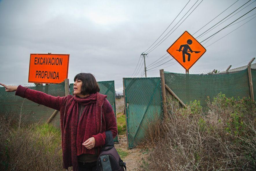 Junto com Gabriel Cantarutti, a arqueóloga Paola González (acima) liderou as escavações no sítio El Olivar, ...
