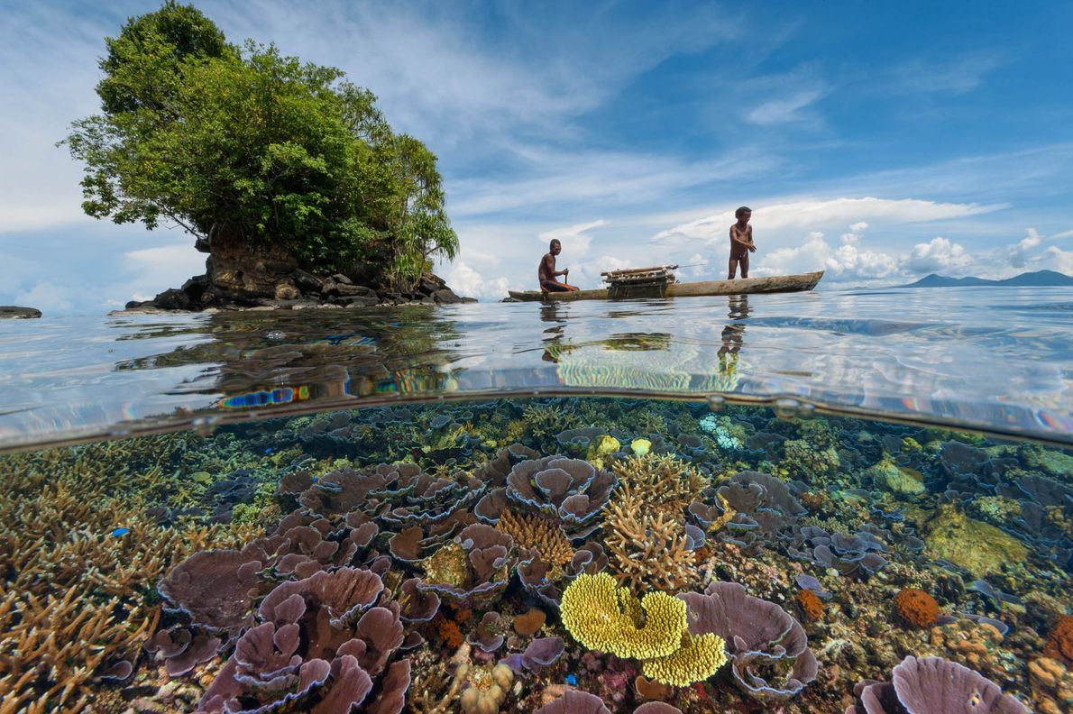 A local fisherman and his son paddle above a coral garden in Kimbe Bay, Papua New ...