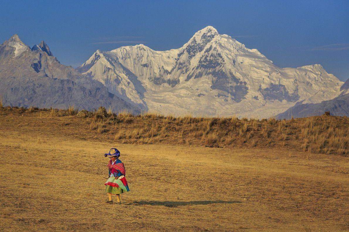 Mesmo nas altitudes mais elevadas, a população andina dá um jeito de criar e alimentar lhamas.