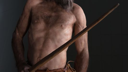 5 fatos surpreendentes sobre Ötzi, o Homem de Gelo