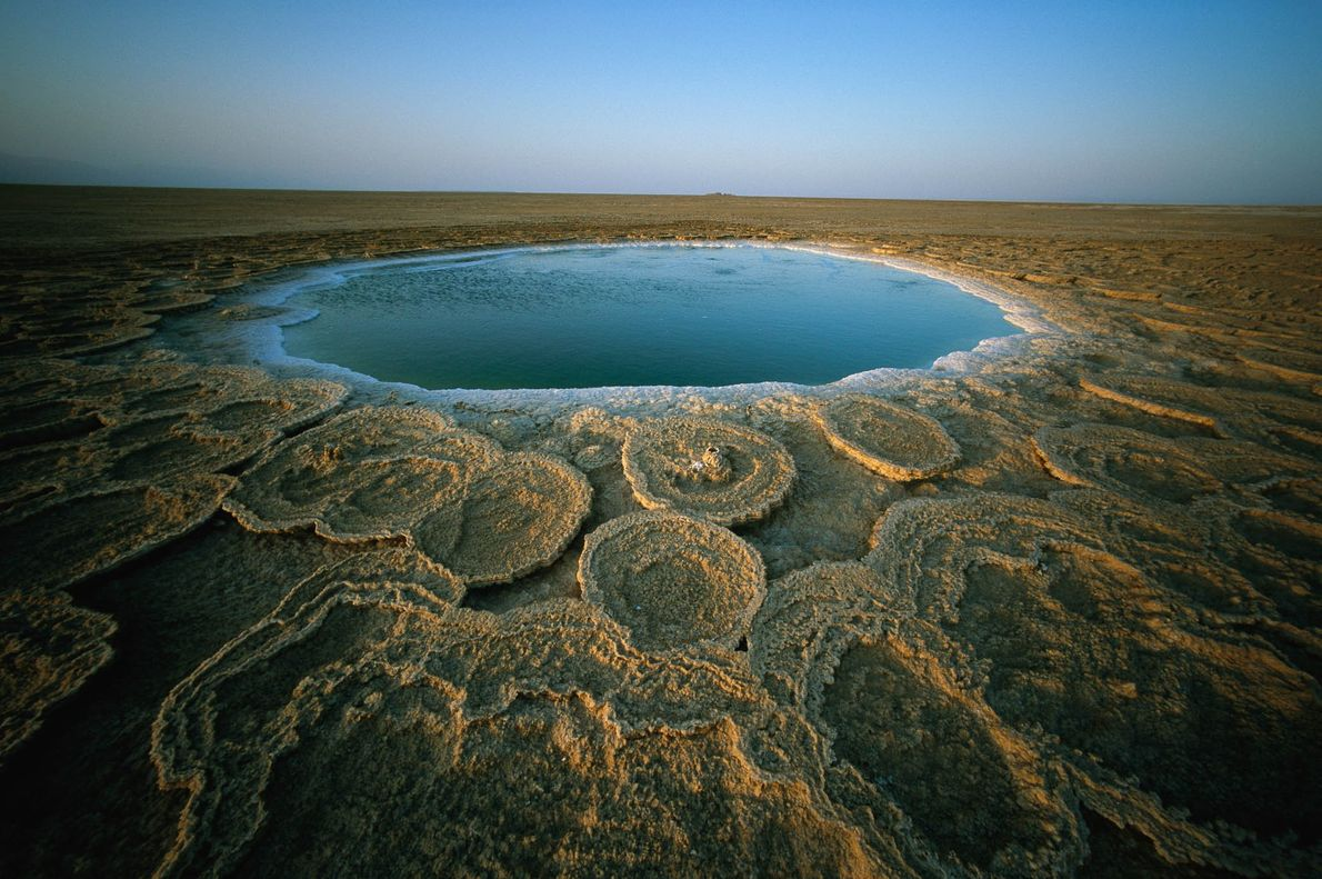 Discs of deposited minerals ring a 12-foot wide hot spring in Ethiopia.