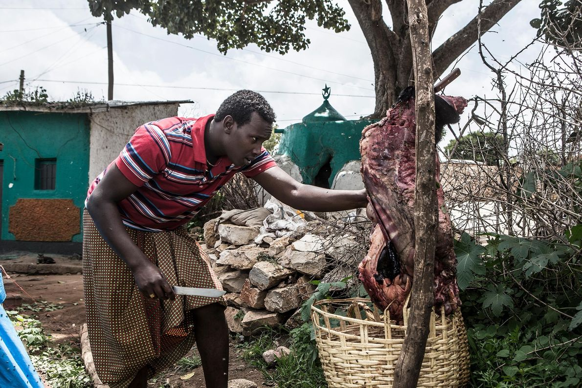 Abbas cuts meat at his house for his nightly hyena feeding.