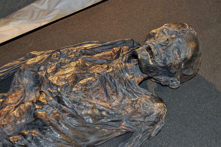 mulher-de-haraldskaer-mumia-do-pantano