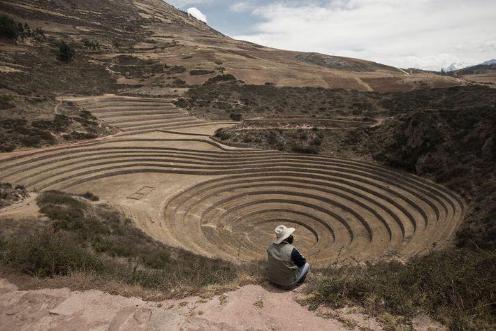 O guarda florestal Tomas Huamanttica Quispe vigia o vazio Centro Arqueológico de Moray, no outono de ...