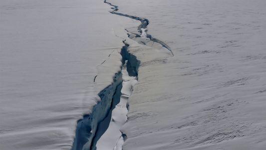 Veja a rachadura de uma placa de gelo da Antártida se dividindo em duas