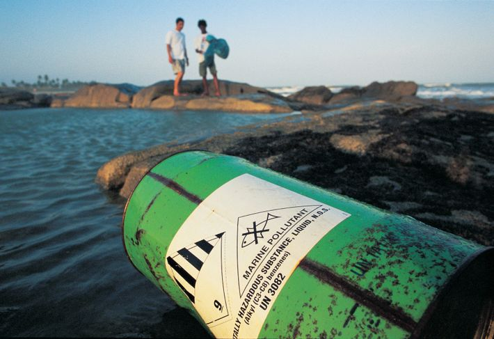 rodrigo-baleia-poluicao-nos-oceanos