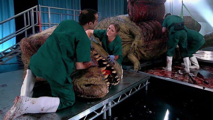 Autópsia de um Predador: A Mordida do Tiranossauro Rex