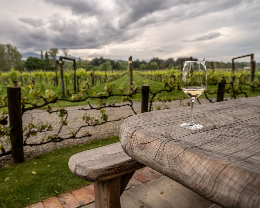 Uma taça de chardonnay nos jardins da Neudorf Vineyards, uma vinícula próxima a Nelson.
