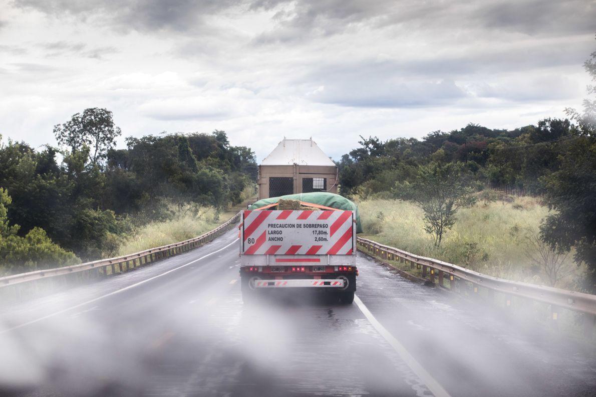 A caixa de transporte levando a elefanta Mara em seu trajeto na estrada do Mato Grosso ...