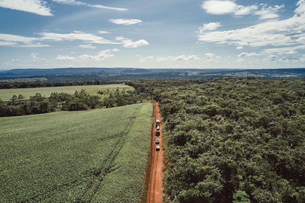 A caravana segue para o Santuário dos Elefantes. Campos de soja, milho e algodão se estendem ao ...