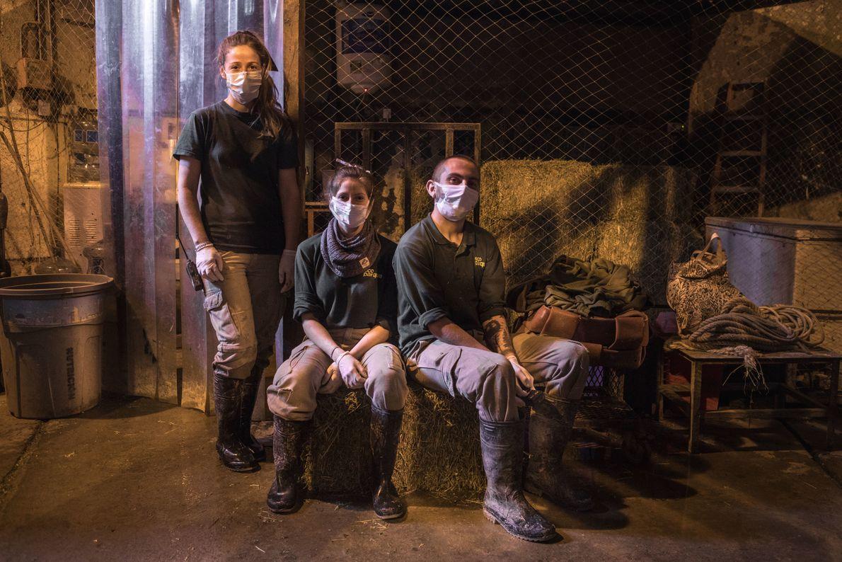 Escondidos atrás das máscaras, os cuidadores Paula Lemos e Marcos Flores, bem como a veterinária Natalia ...