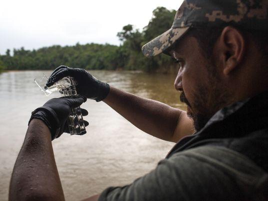 Rejeitos da barragem de Brumadinho chegam ao São Francisco, diz ONG