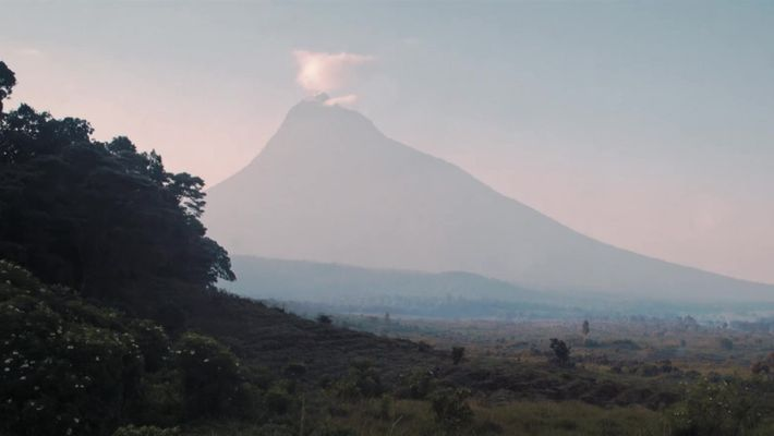 Confira um trecho do episódio de Explorer, A Guerra de Virunga