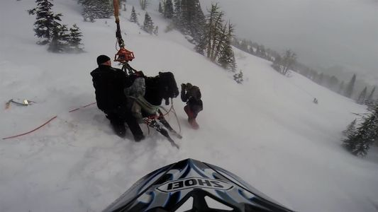 Cavalo preso nas montanhas é içado por uma equipe de resgate