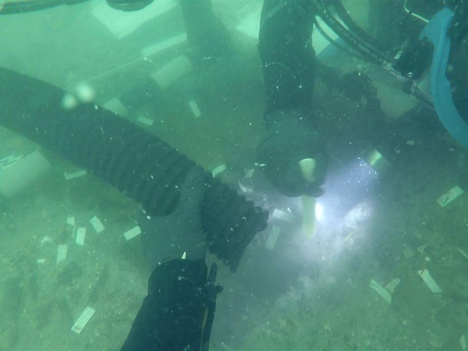 Cemitério indígena de 7 mil anos é encontrado próximo à costa da Flórida