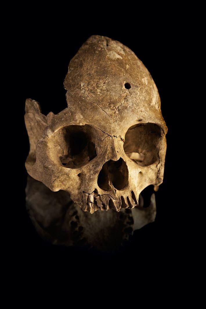 lapa-do-santo-arqueologia-minas-gerais