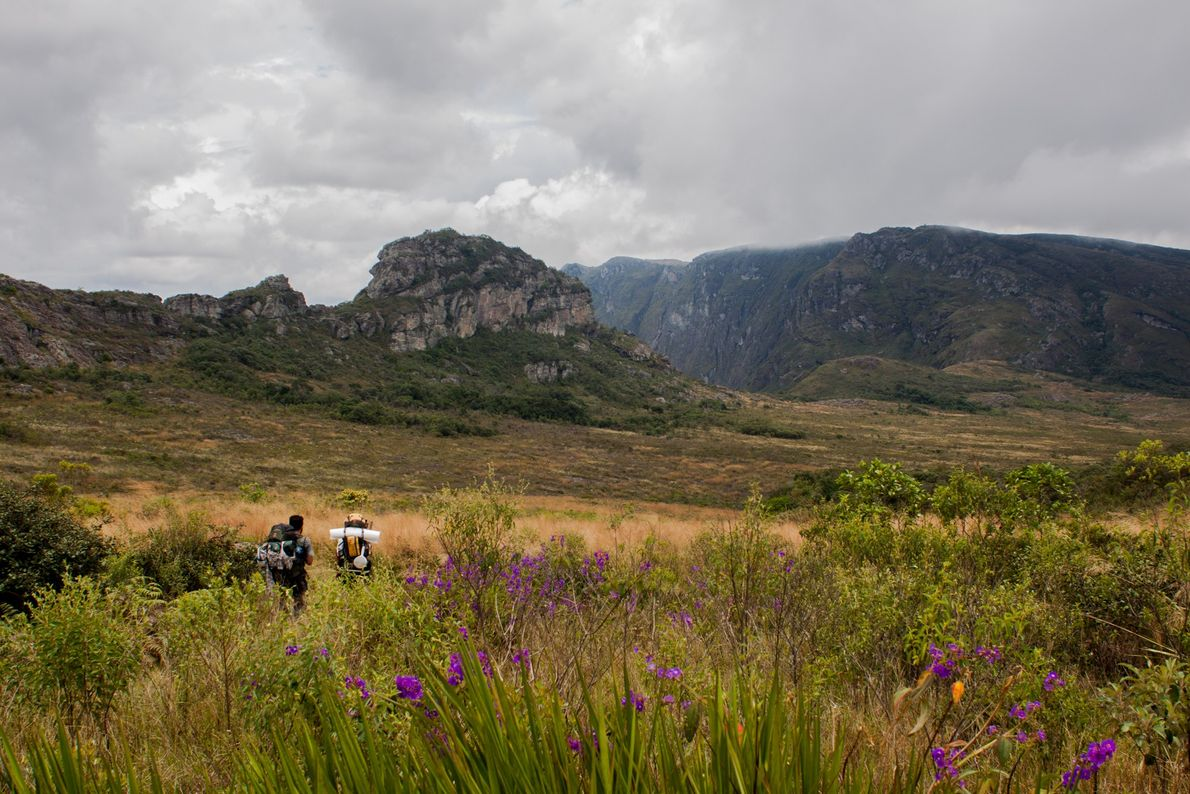 Pesquisadores da Universidade Federal de Minas Gerais iniciam trilha no Parque Estadual do Pico do Itambé, ...